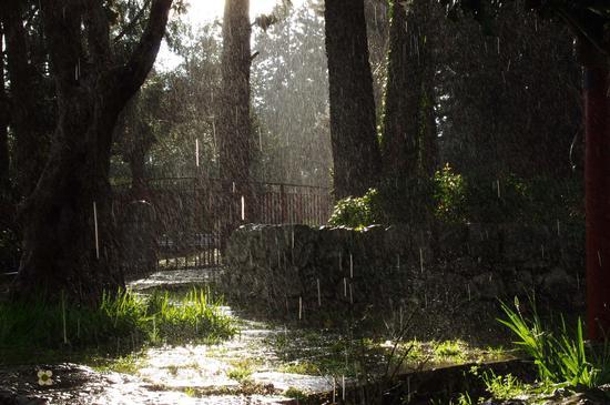 sole e pioggia - Modica (814 clic)