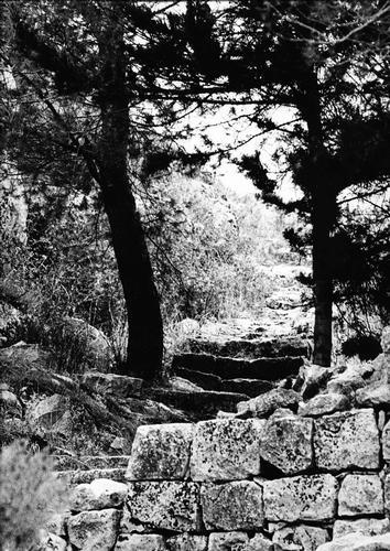 Manserrato '69, sentiero - Modica (2828 clic)