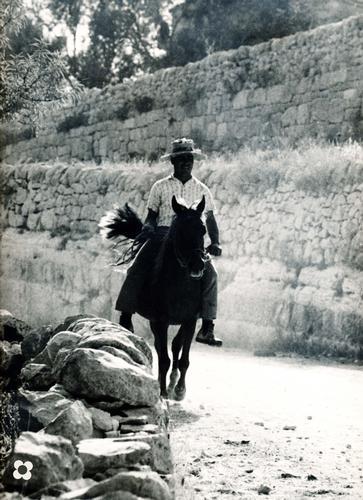 quando si tornava dalla mietitura, mentre il cavallo avanzando solleva la polvere della trazzara - Modica (3088 clic)