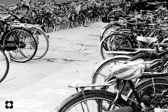 biciclette a Pechino (722 clic)