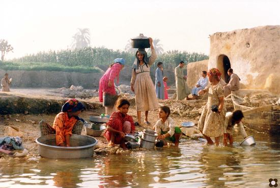 pulizie di prima mattina sul Nilo in semi controluce (882 clic)