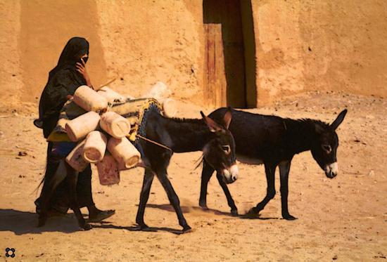 a Sud del Morocco, verso il pozzo (758 clic)