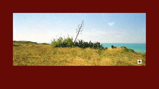 agave al pisciotto - Sampieri (1940 clic)