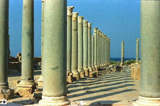 Libia. Leptis Magna, colonnato al tramonto (947 clic)