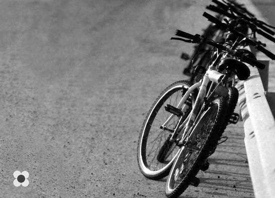 bici in bianco e nero - Pozzallo (2186 clic)