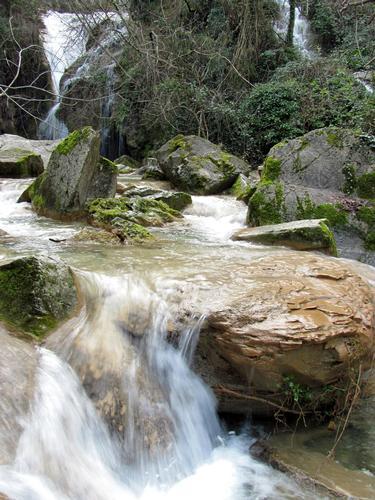 Rio Buti - Prato (3723 clic)