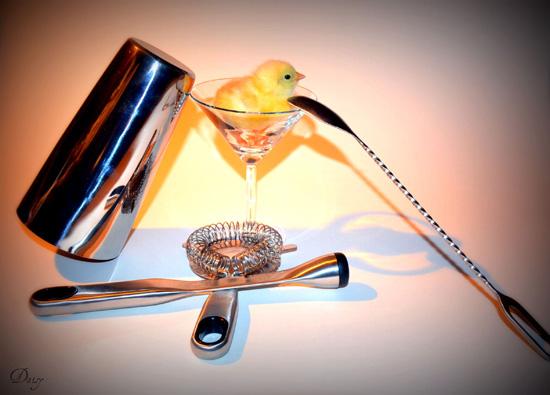 il pulcino ubriachino ;-)  - Fara gera d'adda (2731 clic)