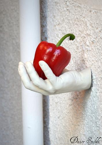 una mano per te.... - Fara gera d'adda (2190 clic)