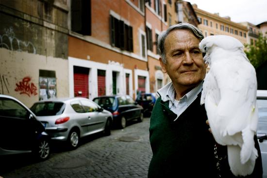 al guinzaglio - Roma (2021 clic)