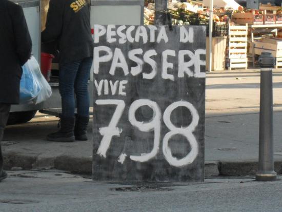 Trieste!! (527 clic)