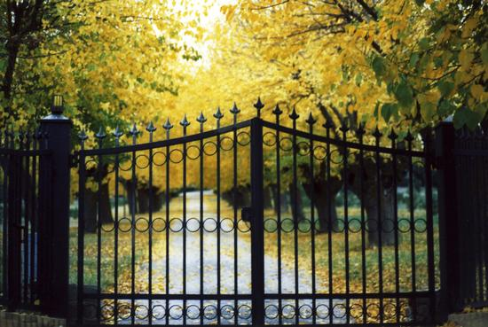 Oltre....il cancello - Mazzangrugno (2990 clic)