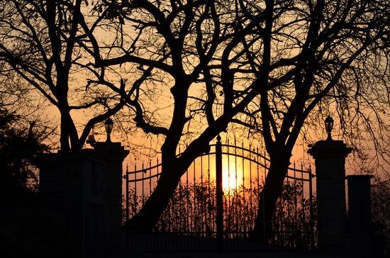 L'ultimo sguardo al sole - Morro d'alba (3914 clic)