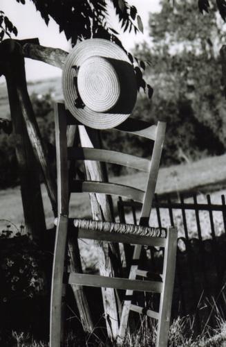 Un solleggiato pomeriggio...in campagna!!! - SAN LORENZO IN CAMPO - inserita il 05-Jan-12