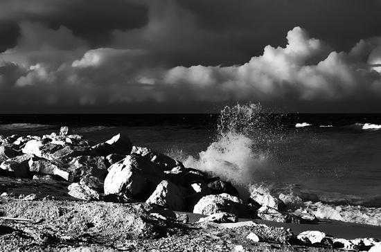 Il fascino del mare - Marzocca (1175 clic)