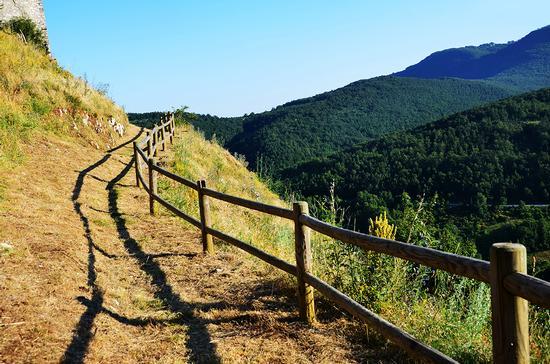 Il sentiero - San severino marche (1023 clic)