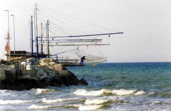 L'uomo e il mare - Senigallia (3186 clic)