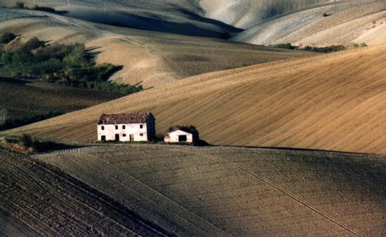 Dolci colline marchigiane.....i caldi colori dell'autunno!!! - San vittore (5144 clic)