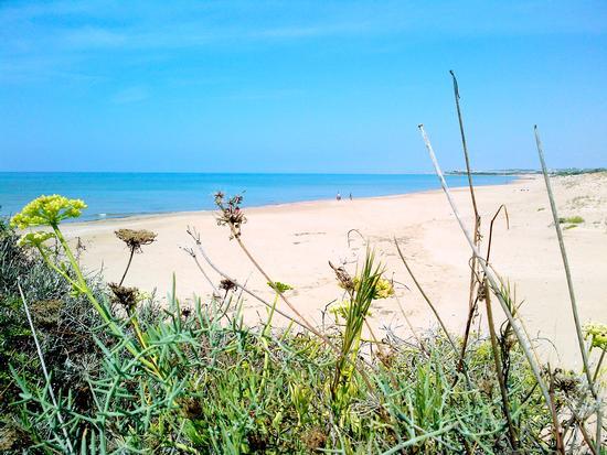 Mare - Punta braccetto (1447 clic)