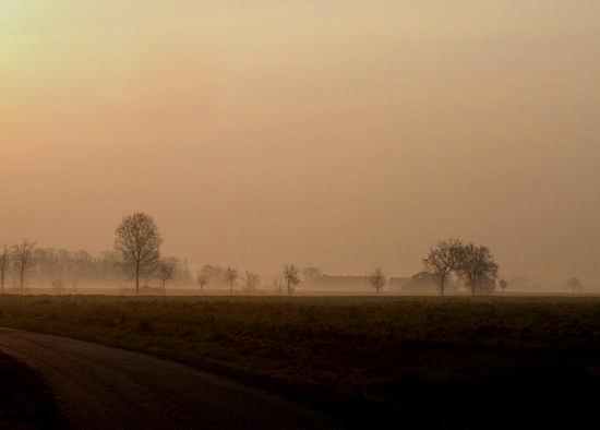 Dintorni di Alessandria - inverno mattina (4121 clic)