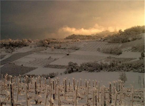 alba del 2 dicembre 2005 - Camagna monferrato (4270 clic)