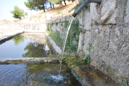 Abbeveratoio di Sutera (3268 clic)