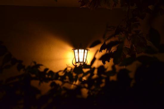 luci (408 clic)