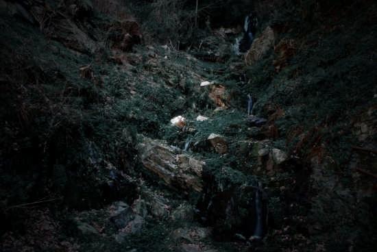 Cascata vicino Samboni - Curinga (2516 clic)