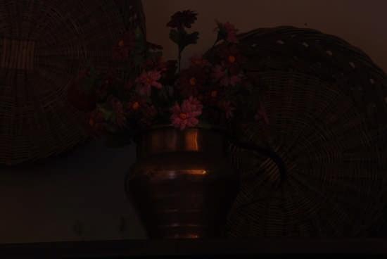 Vaso di fiori - Curinga (2180 clic)
