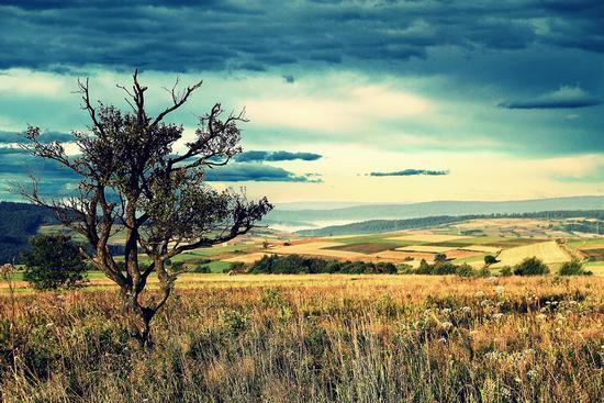 uno giorno d'autunno  - Nord Europa (3831 clic)