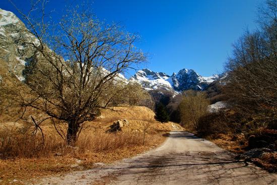 Primavera in montagna - Aulla (6343 clic)