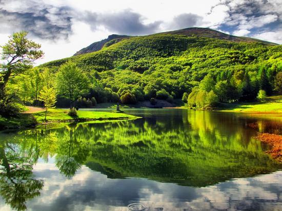 Lago Calamone - Ramiseto (506 clic)