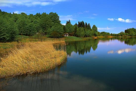 Lagho Calamone - primavera - Ramiseto (6589 clic)