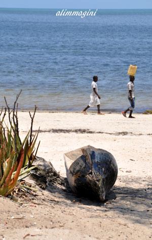 costa africana....verso casa ! (533 clic)