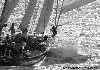 Nel mare di IMPERIA....veleggiando ! (572 clic)