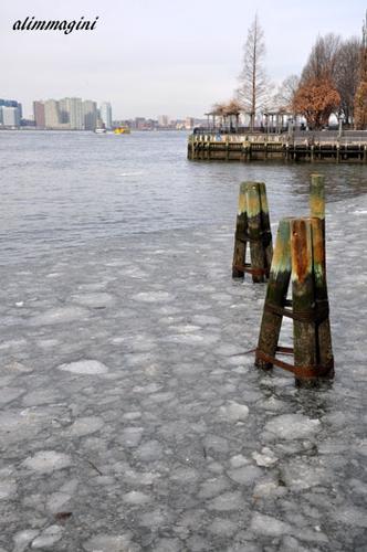 New York nella morsa del gelo ! (298 clic)
