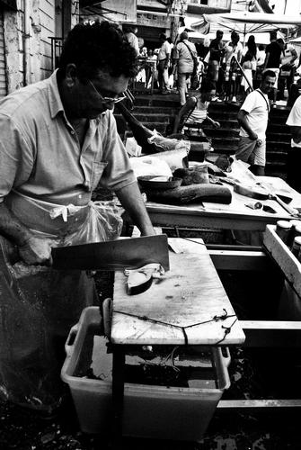Mercato del pesce Catania (2588 clic)