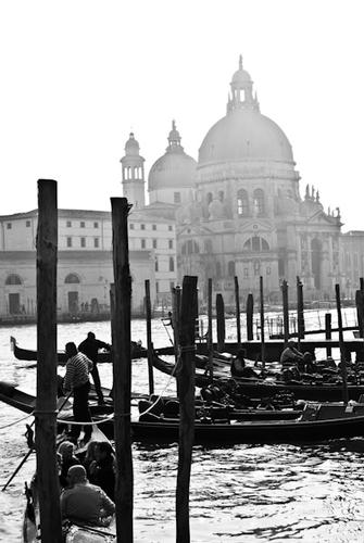 Venezia (4084 clic)