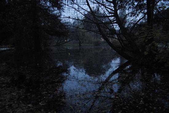 Milano Parco Sempione - MILANO - inserita il 19-Jan-12