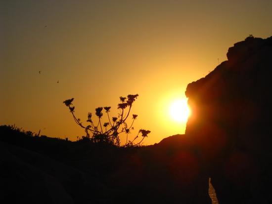 Semplicemente..tramonto. - ALGHERO - inserita il 31-Jul-12