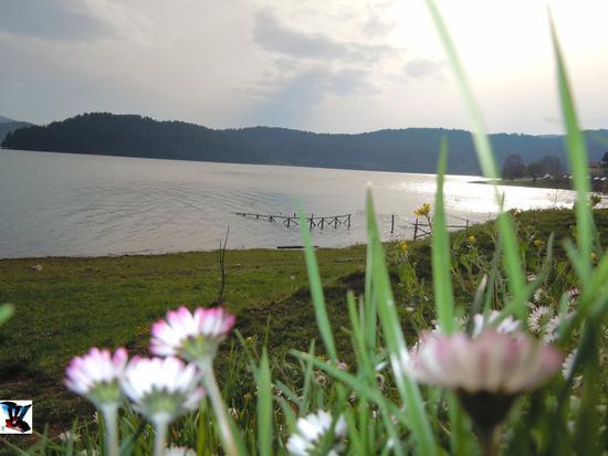 Lago Arvo, Lorica Cosenza (740 clic)