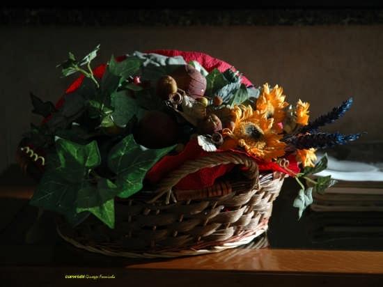 natura morta - Anzio (2453 clic)