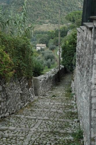 scorcio - Norma (2563 clic)