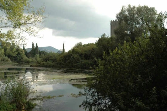 Giardini di Ninfa - Norma (4574 clic)