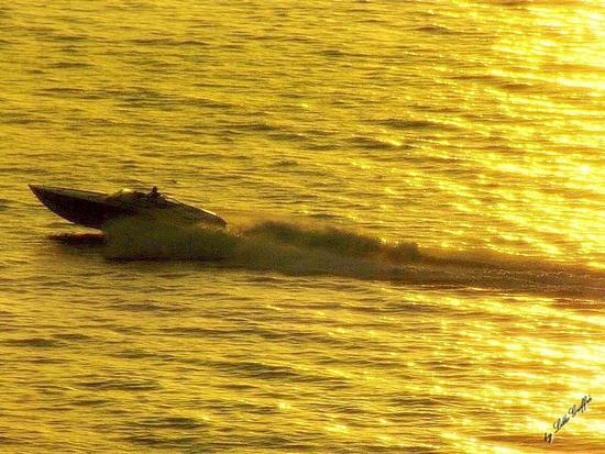 Sfrecciando sulle dorate onde - Pizzo (3724 clic)