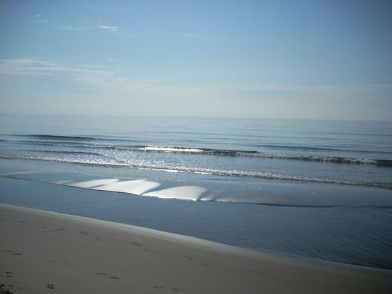 ...dune di mare - Chiatona (2391 clic)