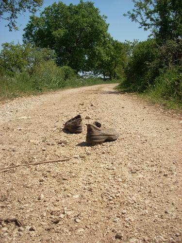 ..cammino,cammino.... - Gioia del colle (2871 clic)