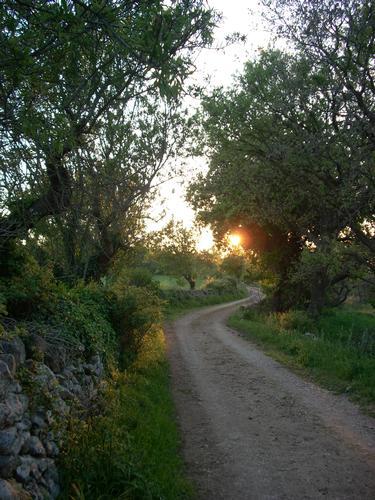 solitario al tramonto - Gioia del colle (1985 clic)