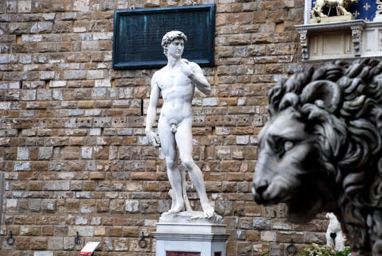 Firenze (2353 clic)