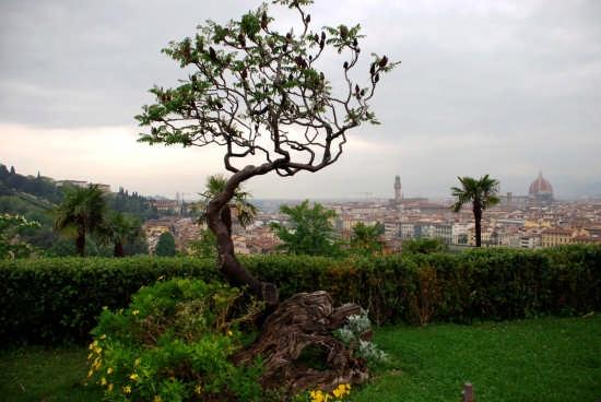 Panorama - Firenze (1981 clic)