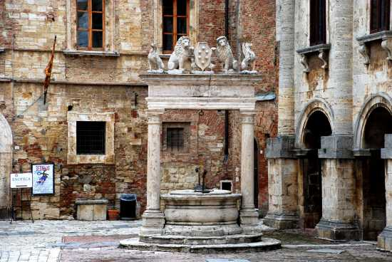 Pozzo dei Grifi e dei Leoni - Montepulciano (2924 clic)